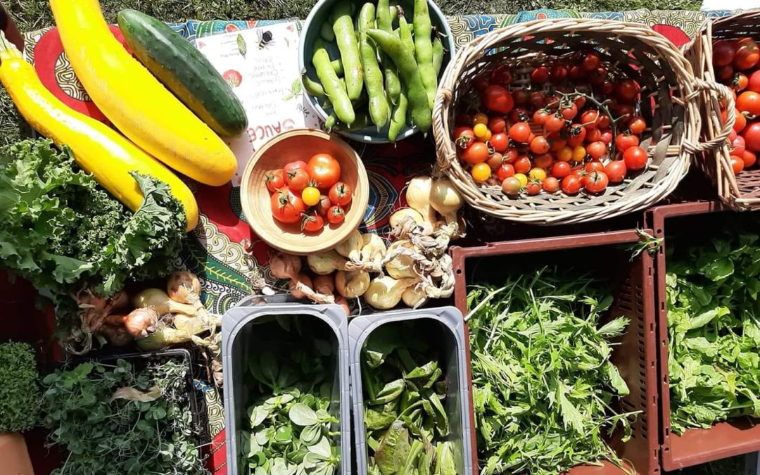 30 Day Local Food Challenge