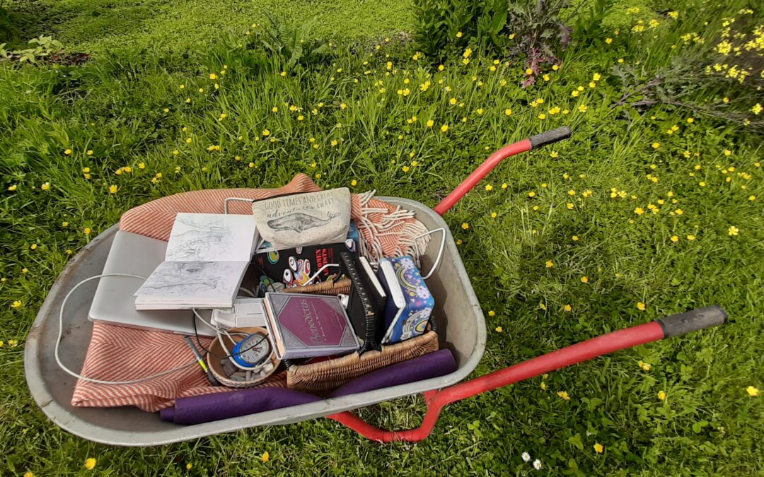 DRAWING WITH NATURE: FREE BIODIVERSITY WEEK WORKSHOP 9.30 FRIDAY 21ST MAY