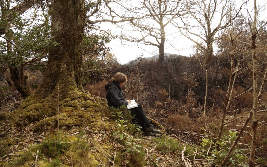 Drawing With Nature: Drop In and Draw 9.30 Fridays in May