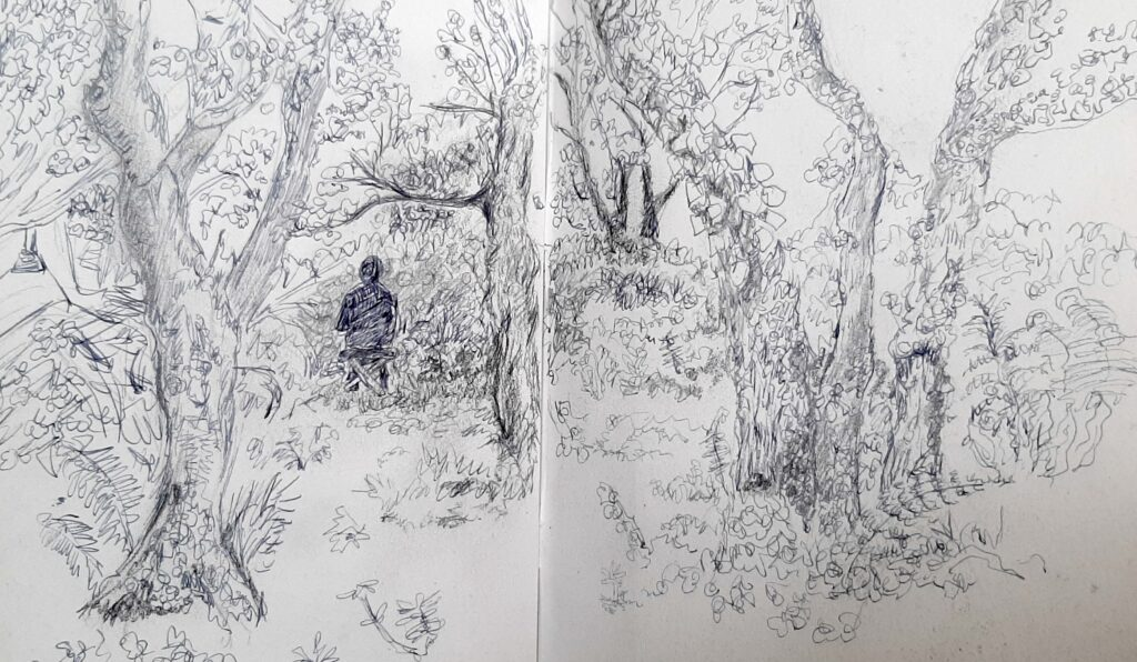 Drawing with nature LIsa Fingleton 2021